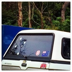 Southern Cross & Australian flag